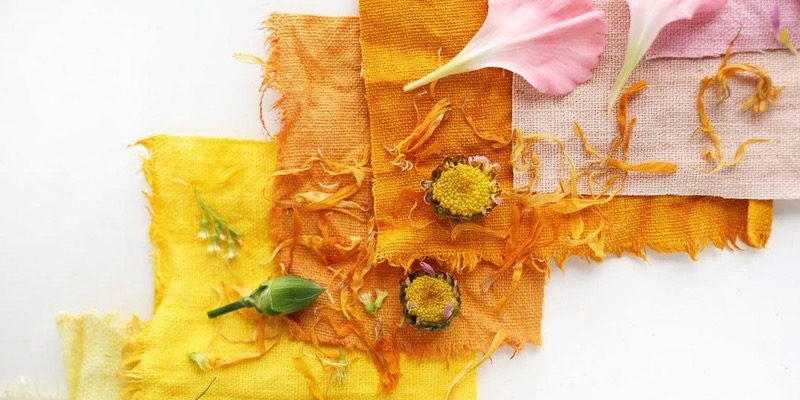 August 19, 2017:  Exploring Colour in the 17th Century