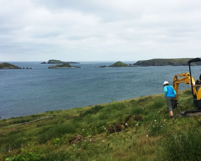 Searching for the lost 17th-century burial ground at Ferryland