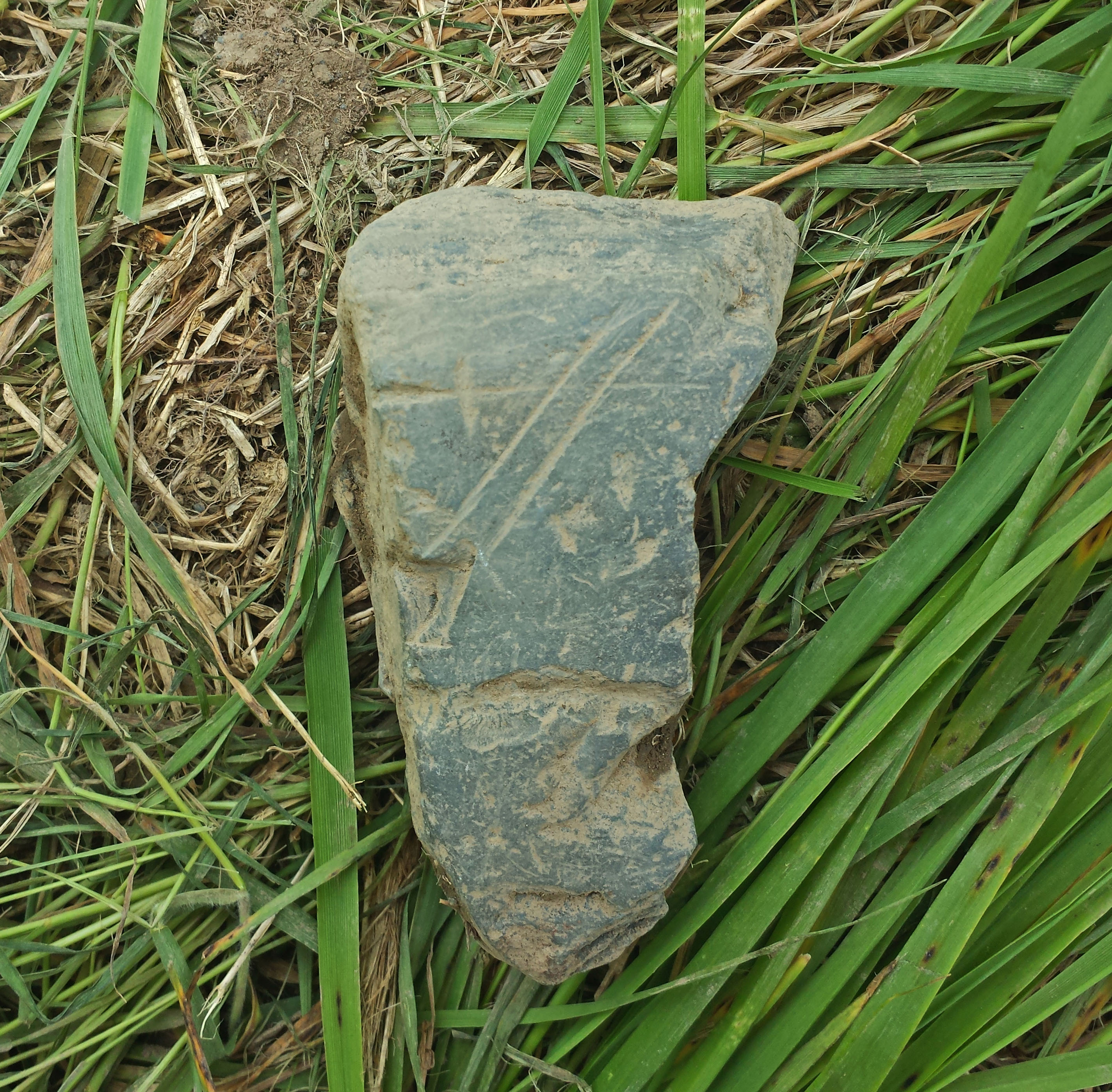 Inscribed stone found by Tiffany Brazil.